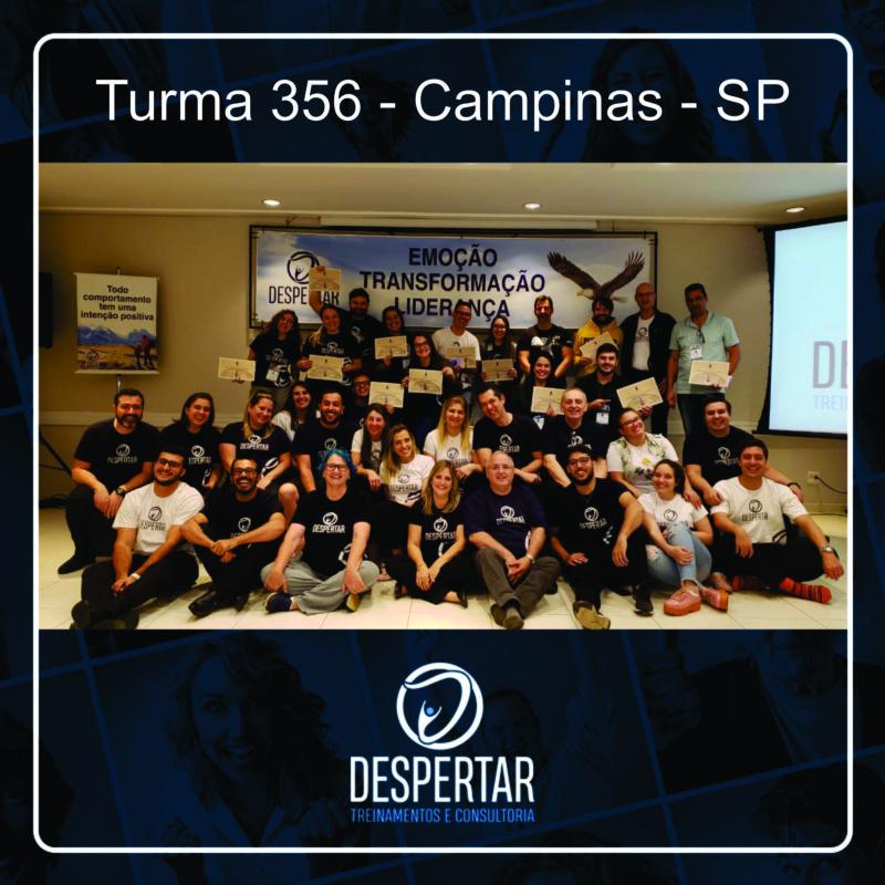 Turma_356